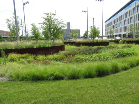 Rainscaping Large Scale Grants Project